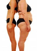 stock photo of body fat  - Very thin woman and overweight lady comparing different body shapes - JPG