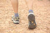 hiking woman legs walking on forest trail