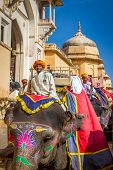 JAIPUR, INDIA - NOVEMBER, 28: Elephant riders in the Amber Fort near Jaipur, Rajasthan, India on November 28, 2012.
