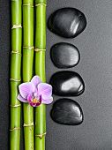 zen basalt stones  bamboo and orchid on the black