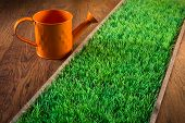 foto of sprinkler  - Orange hand sprinkler with green turf on hardwood floor - JPG