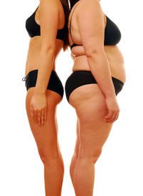 stock photo of skinny fat  - Very thin woman and overweight lady comparing different body shapes - JPG
