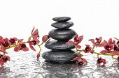foto of wet  - Orchid and wet black stacked stones on wet background  - JPG
