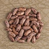 foto of pinto bean  - Top view of circle of pinto beans against green vinyl background - JPG