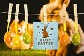stock photo of taxidermy  - happy easter graphic against ginger bunny rabbit - JPG