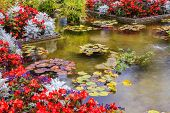 picture of ponds  - Delightful landscaped and floral park Butchart Gardens on Vancouver Island - JPG