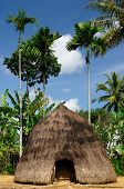 image of hunters  - Head hunters minority village on the Timor island near Soe - JPG