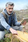 foto of scientist  - Environment scientist looking at tree trunk and using tablet - JPG