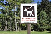 stock photo of poo  - Sign in Japanese park telling people that they must have their dog on dog leash and it is forbidden to leave dog poo - JPG