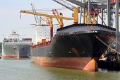 picture of container ship  - Loading and unloading of container - JPG