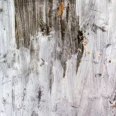 picture of nail paint  - Abstract background gloomy concrete wall casually painted dark green paint weathered with cracks and scratches in the wall hammered a rusty nail - JPG
