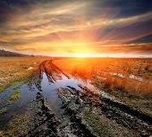 stock photo of dirt road  - dirt road in spring steppe after rain against sunset background
