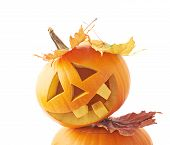 picture of jack o lanterns  - Two Jack - JPG
