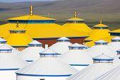 pic of yurt  - Yellow and white yurt at Inner Mongolia China - JPG