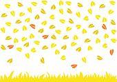 Leaves raining on yellow grass