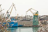picture of shipbuilding  - View of shipbuilding shipyard through the flowering trees - JPG