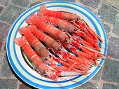 stock photo of porphyry  - Five Norvegian lobsters on a round plate on a porphyry surface - JPG