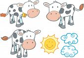 Vector Illustration of Cows