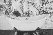 Bathtub At Spring Blossom, Spa. Spring Relax In Bathroom. Beauty And Spa, Health, Wellness. Spa And  poster