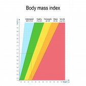 Body Mass Index (bmi). Weight Height Chart. For Women And Men. Weight In Kilos, Height In Meter. Hea poster