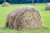 stock photo of hay bale  - One Isolated Hay Bale in a Field - JPG