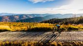 Cycling woman riding on bike in spring summer mountains forest landscape. Woman cycling MTB flow tra poster