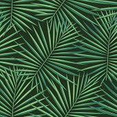Tropical Palm Leaves Pattern Seamless Background. Exotic Fashion Trendy Floral Foliage Pattern. Seam poster