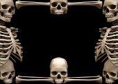 skeleton border