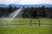 Self Propelled Irrigation Sprayers