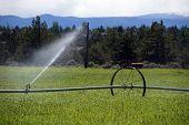 Self Propelled Irrigation Sprayers
