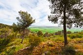 stock photo of golan-heights  - View of the Snowy Peaks of Hermonon the Golan Heights - JPG