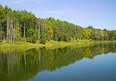Watergate Pond