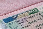 stock photo of olympiad  - shot of few passport with Schengen visa
