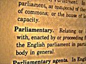 Dictionary Parliamentary
