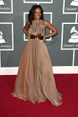 Wayna at the 51st Annual GRAMMY Awards. Staples Center, Los Angeles, CA. 02-08-09
