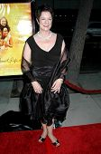 Sue Monk Kidd  at the Los Angeles Premiere of 'The Secret Life of Bees'. Academy of Motion Arts and