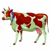 Brown and white cow, side view, isolated