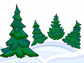 The Cartoon Coniferous Forest And Winter Snowdrifts