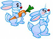The Cartoon Illustration Of Two Rabbits.