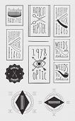 Trendy Retro Vintage Insignias Bundle | Retro hand drawn elements for calligraphic designs | hipster