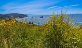 foto of klamath  - Beach at Del Norte Coast State Park in California north of Klamath - JPG