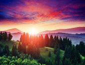Beautiful green hills at twilight. Dramatic red sky. Carpathian, Ukraine, Europe. Beauty world.