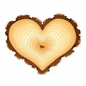 Wooden cross section of the heart shape. Vector.