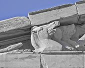 Parthenon west pediment detail, horse head