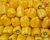 yellow bell peppers for sale