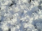 Large and giant snowflake crystals.