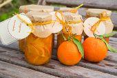 Homemade Tangerine Marmalade