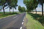 Asphalt road.