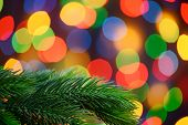 Christmas Background with Fir-tree Branch on the Blurred Holiday Lights Background