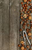 Hazelnuts, Walnuts And Nutcracker On Gray Wooden Background.